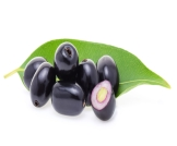 فاكهة الجامون