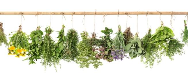 هل يمكن علاج اضطراب الهرمونات عند الرجال بالأعشاب؟