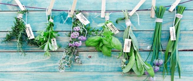 علاج تضخم البروستاتا بالأعشاب وبطرق طبيعية أخرى