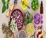 علاج سرطان الدم بالأعشاب