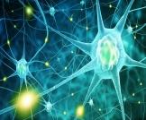 أمراض الجهاز العصبي النادرة