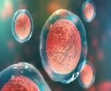 علاج عصب السمع بالخلايا الجذعية