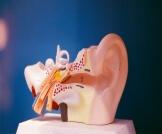 تنشيط العصب السمعي