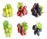 حساسية العنب