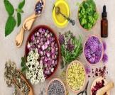 علاج تقرحات الفم بالأعشاب
