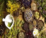 علاج التهاب الجريبات الشعرية بالأعشاب