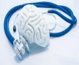 ارتشاح المخ