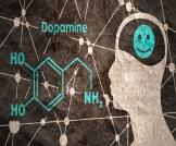الدوبامين والانتصاب