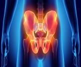 مدة التئام عظام الحوض