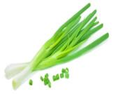 البصل الأخضر للحامل
