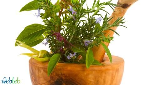 النباتات الطبية تشفي ام تساعد على التعافي
