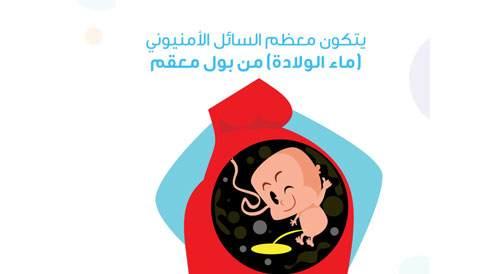 أغرب حقائق عن الحمل
