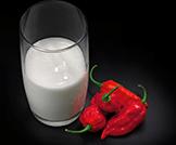 ما علاقة شرب الحليب بتخفيف حدة الفلفل؟