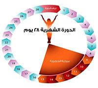 رسم بياني للدورة الشهرية