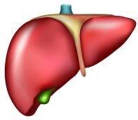 ما هو التهاب الكبد