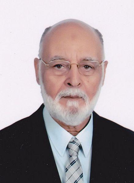 محمد بهاء الدين هلالى