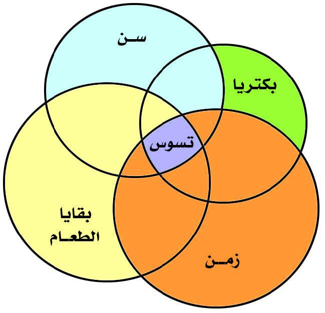 الشكل يبين العوامل الأولية المسببة للتسوس (تضافر أربعة عوامل معاً).