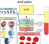 عناصر الدم