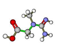 جزيء كرياتين