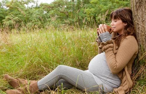 فوائد اليانسون للحامل