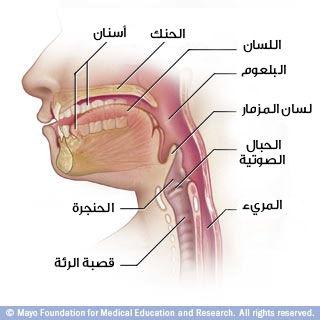 صحة الفم : ما الذي يختبئ وراء الإبتسامة.