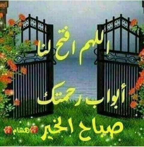 صورة صاحب التعليق - زهرةة
