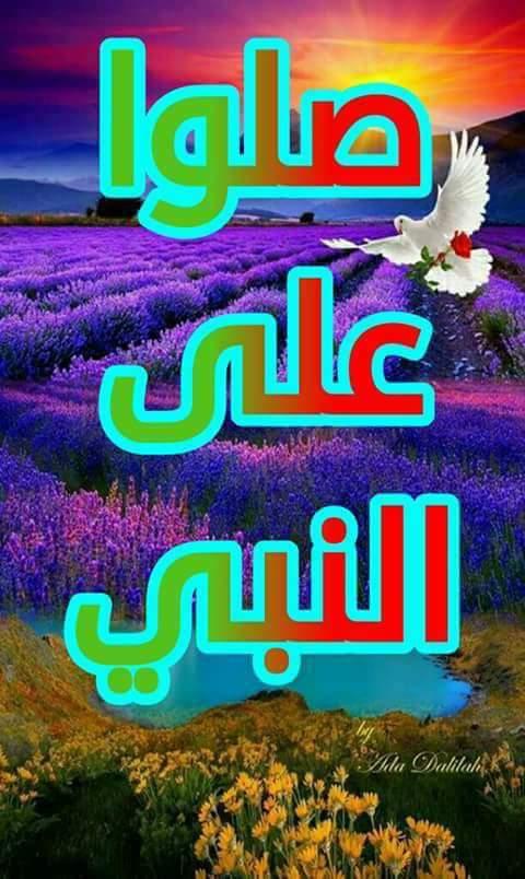 صورة صاحب التعليق - Zozo ماهر Zozo