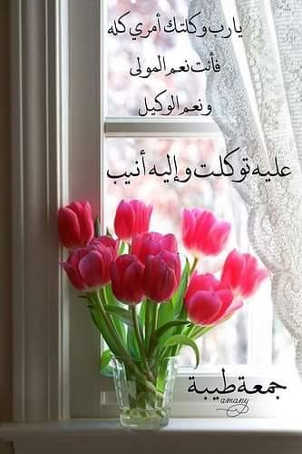 صورة صاحب التعليق - سمر