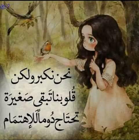 صورة صاحب النقاش - محمود الجابري