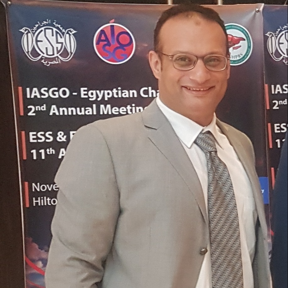 محمد عبد العزيز عامر